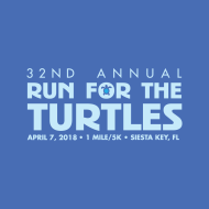 Run 4 the turtles